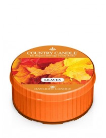 Leaves DayLight Country Candle