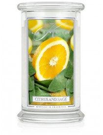 Citrus and Sage Giara Grande Kringle Candle