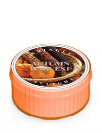 Autumn Harvest Daylight Kringle Candle