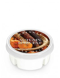 Autumn Harvest Wax Melt Kringle Candle