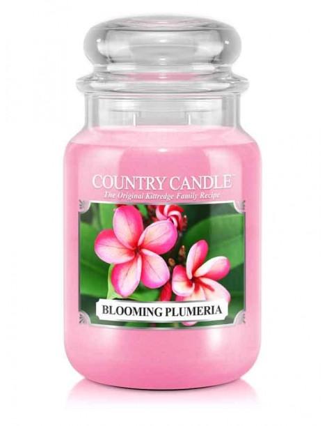 Blooming Plumeria Giara Grande Country Candle