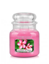 Blooming Plumeria Giara Media Country Candle