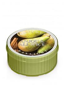 Anjou & Allspice DayLight Kringle Candle